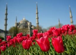 Истанбул - от Бургас